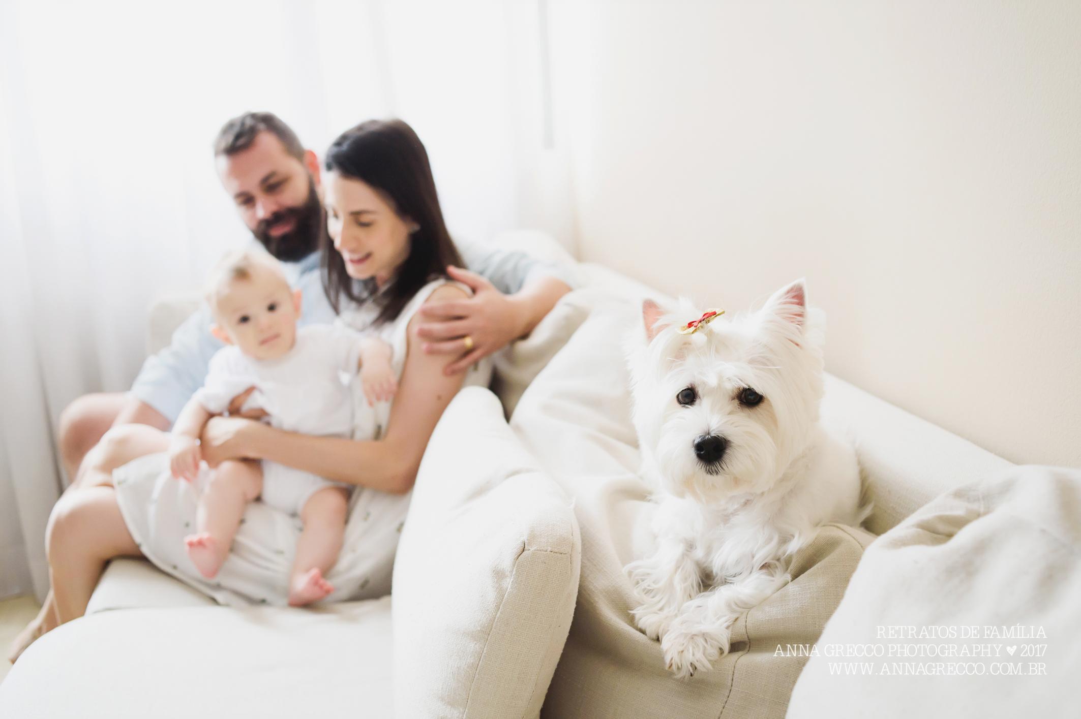 pets da família